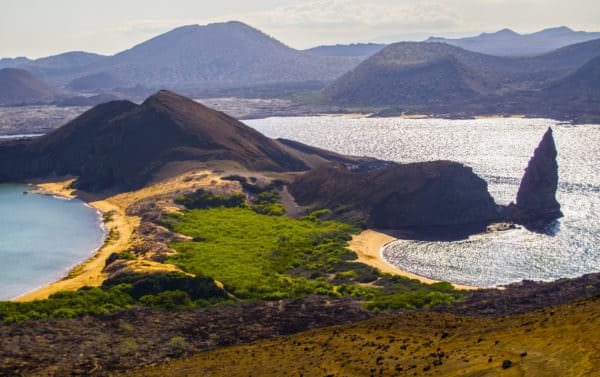 Diving in the Galapagos Islands – The Ultimate Guide