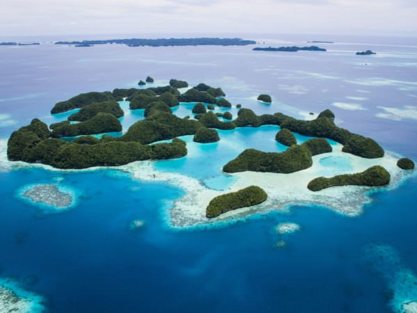 Diving in Palau